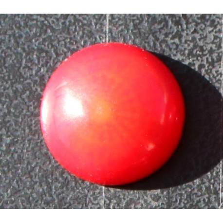 6.0 Carat 100% Natural Coral Gemstone Ocean Sea Product No 055