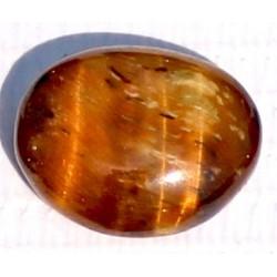 9.5 Carat 100% Natural Tiger Eye Gemstone Srilanka Product No 101