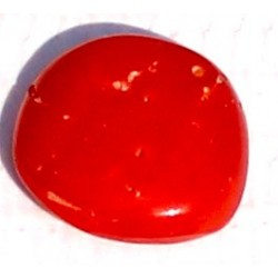 3 Carat 100% Natural Coral Gemstone Ocean Sea Product No 013