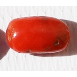2.5 Carat 100% Natural Coral Gemstone Ocean Sea  Ref: Product No 002